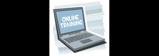 online-training-3